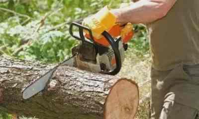 Кронирование и спил деревьев - Магнитогорск, цены, предложения специалистов